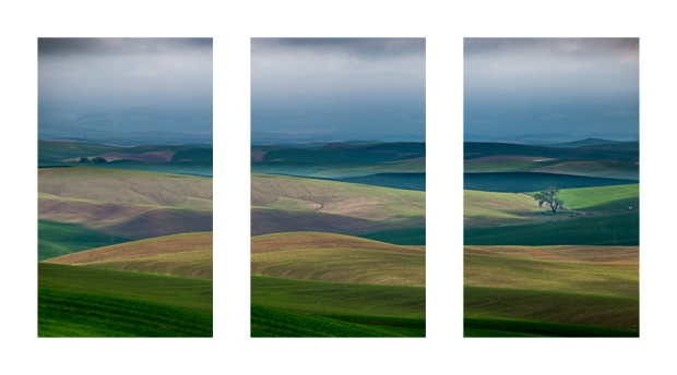Triptych-Paulouse